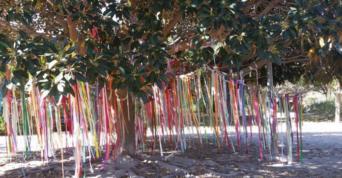 Árbol memorial mascotas metal parque playa san juan