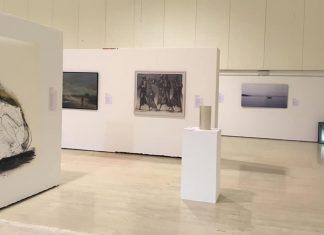 Exposición 40 sobre 40 en el MUA