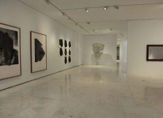 Exposición Materia de Grises en el MACA