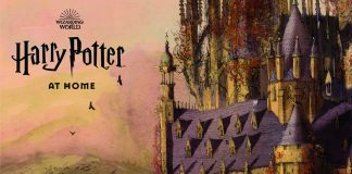 Harry Potter en casa