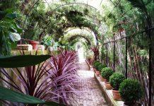 Jardines históricos de la provincia de Alicante