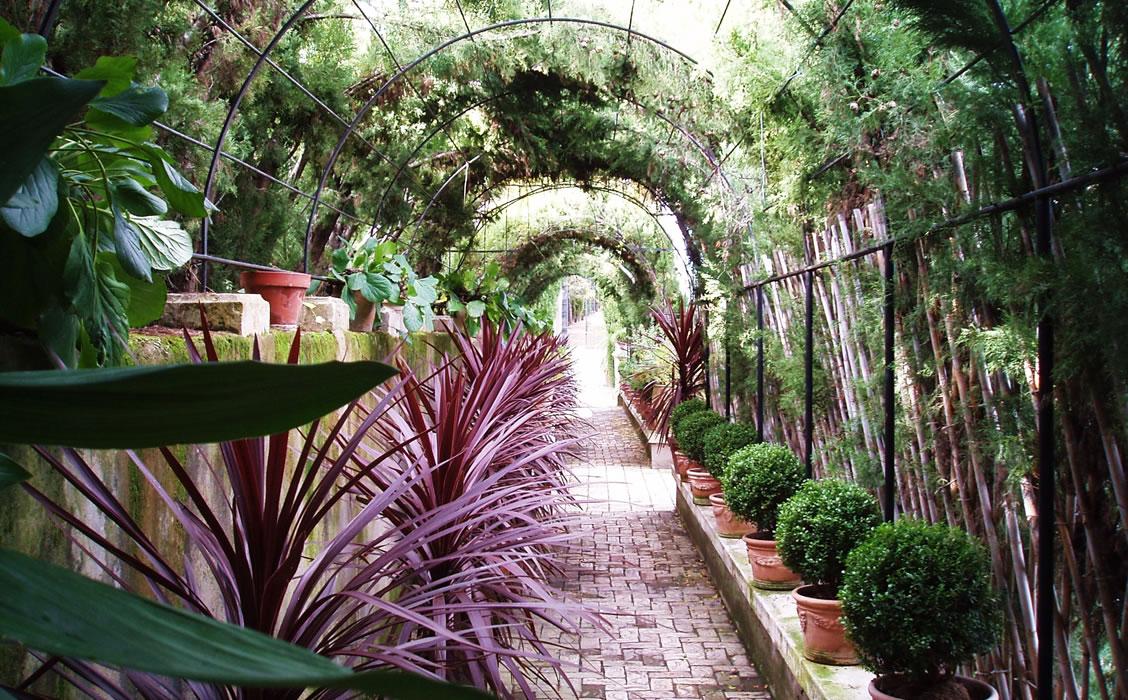 Jardín de Santos Penáguila