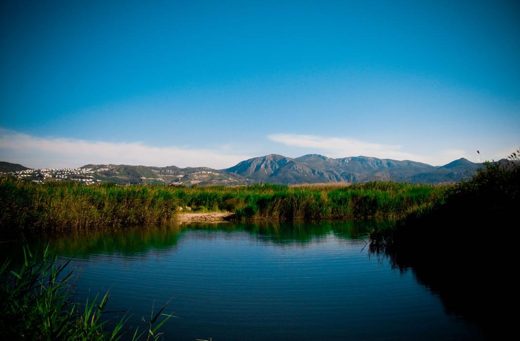 Parque Natural de la Marjal Pego-Oliva