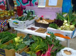Mercado ecológico huerto comunitario Carolinas Alicante