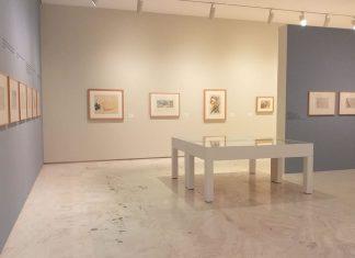 Picasso y un siglo de artistas en el MACA