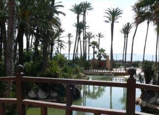 Parque El Palmeral Alicante