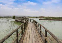 Parques Naturales de Alicante