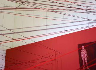 Exposición Situación Límite de María Dolores Mulá