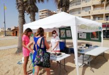 talleres medioambientales playas torrevieja